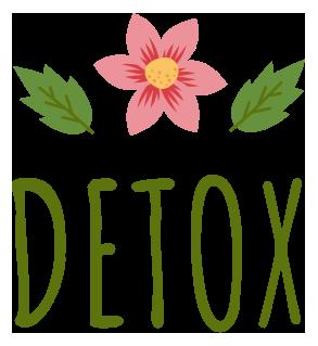 detox mexico logo transparente recortado